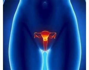 Что такое эндометрит матки? Как определить и вылечить