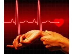 Какой пульс у взрослого человека считается нормой