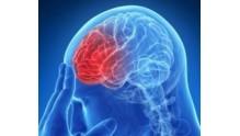 Прогноз жизни при менингиоме головного мозга, операция, последствия