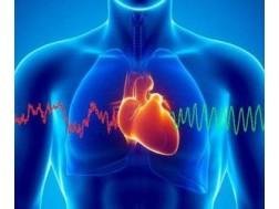 Болезни сердца: список и симптомы, лечение и профилактика