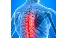 Остеохондроз грудного отдела позвоночника: симптомы и лечение у взрослых