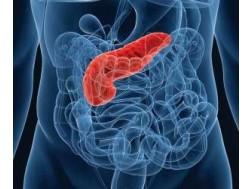 Самое эффективное лечение панкреатита народными средствами