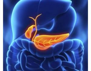 Холецистит: симптомы и лечение у взрослых медикаментами и диетой