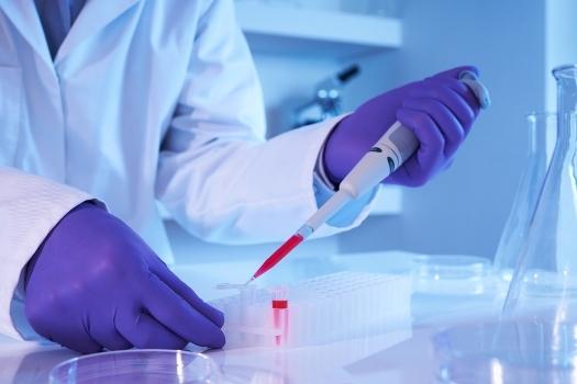 сбор анализа крови