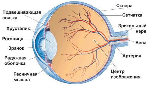 деформация глазницы