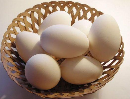 белок яиц от катаракты