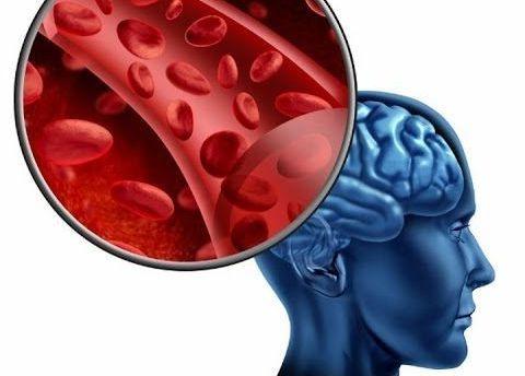 циркуляция крови в голове
