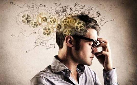 функции работы мозга