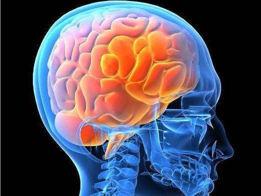 менингиома в голове