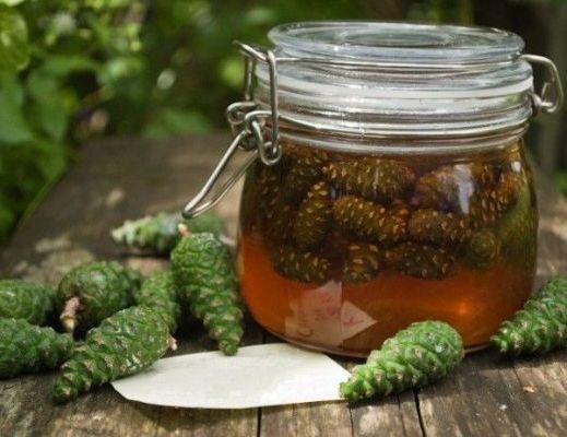 спиртовая настойка из сосновых шишек