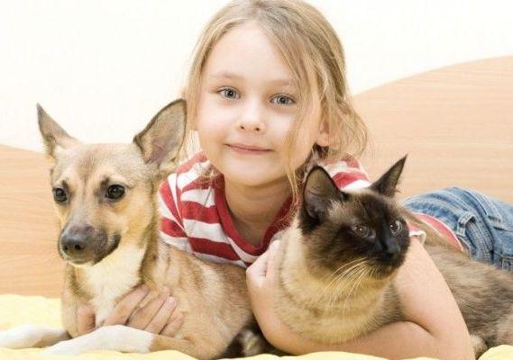 в обнимку с собакой и кошкой