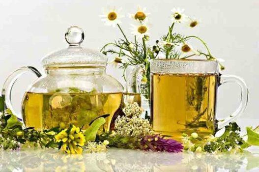 травяные настои для лечения цистита