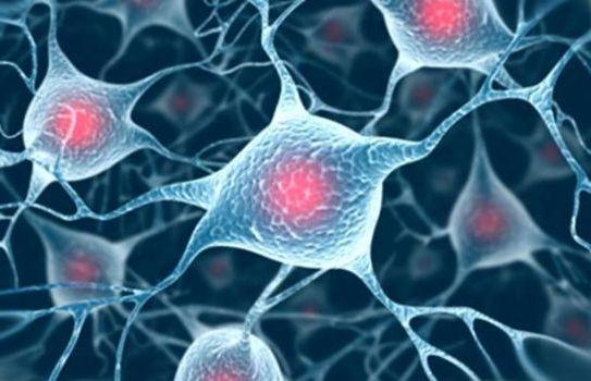 лечение клеток мозга