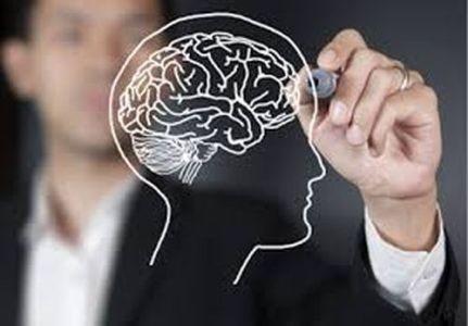 мозг в голове рисунок