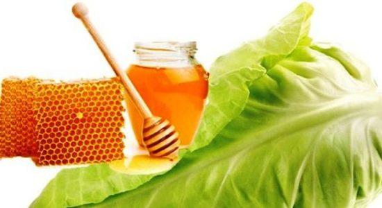 капуста с медом