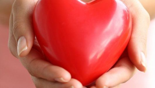 сердце в ладони