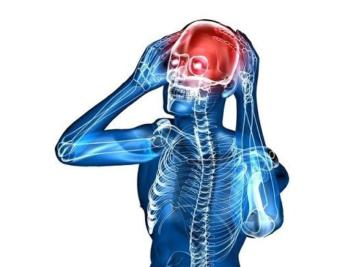 сосуды в головном мозгу