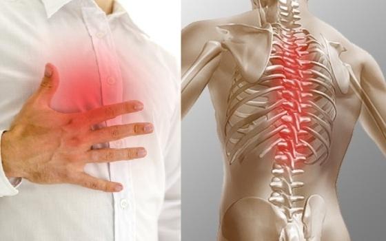 очаги боли в спине и груди