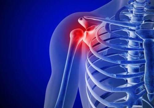 как работает плечевой сустав