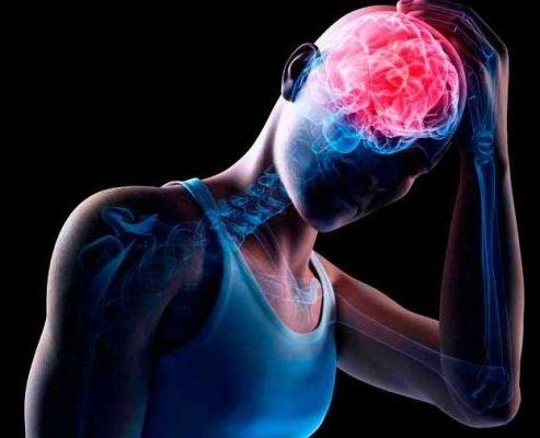 направление на головной мозг