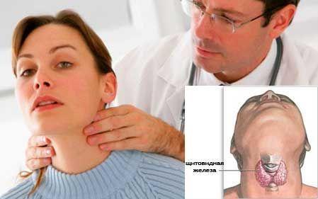 обследование эндокринолога