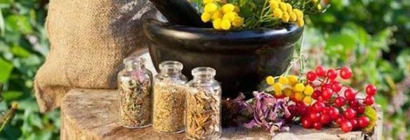 народные средства при щитовидной железе