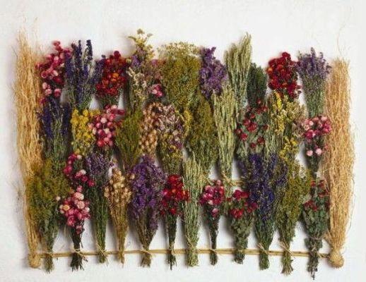 травяные сборы для лечения щитовидки