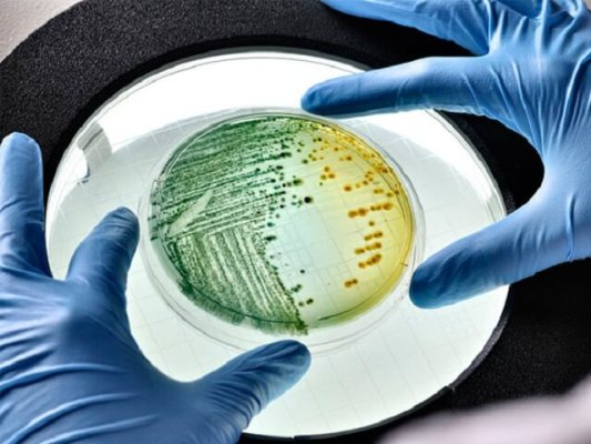 исследование микрофлоры