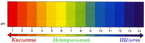 лакмусовые полоски для определения кислотности