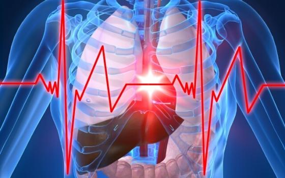 при аритмии сердца