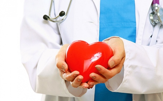 сердце в руках кардиолога
